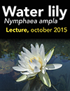 29 water lily lecture Oct 23 2015 animal lecture Oct 30